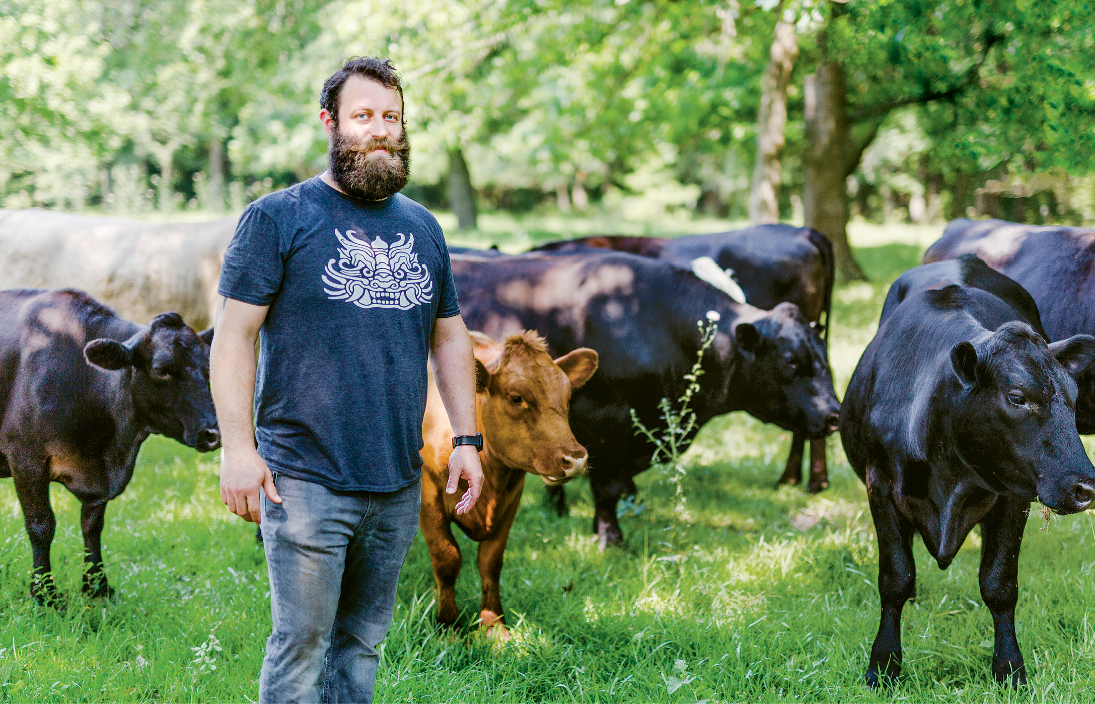 Perfect steering: Chef Bob Cook amidst  grass-fed cattle at Keegan-Filion Farm in Walterboro
