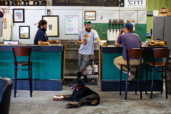 Tim Bettencourt, Chris Brown, and Sean Nemitz and Brewtus laying down in the tasting room.