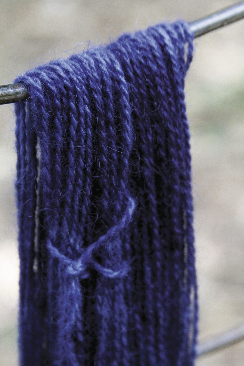 Yarn dyed to a vibrant hue in a fresh-leaf vat using the Indigofera suffruticosa that Donna grew last summer
