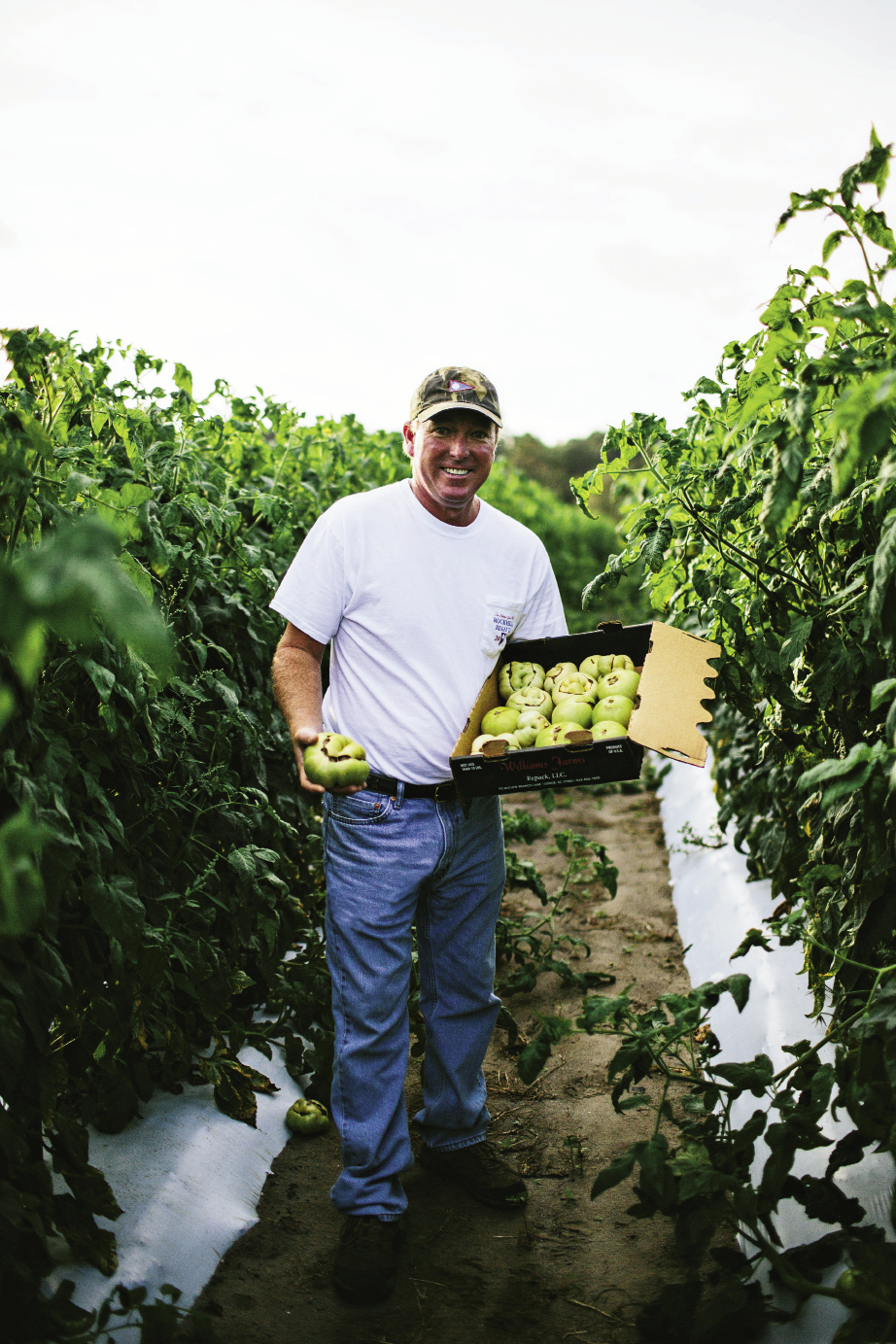 "Shawn Thackeray has been growing his signature—and aptly named—""Wadmalaw Fuglies"" at his farm on the island for 12 years. These are picked green for shipping to supermarket shelves. But don't let their scarred looks fool you: Fuglies have a mild, sweet flavor and are well-balanced with acidity. Thackeray also produces a bounty of other tomatoes, including these colorful heirloom cherries."