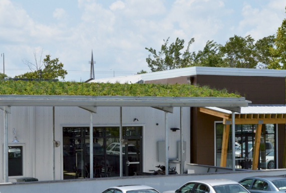 A Half Mile North green roof