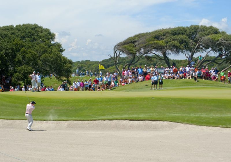 The fans took full advantage of the front nine's trees.
