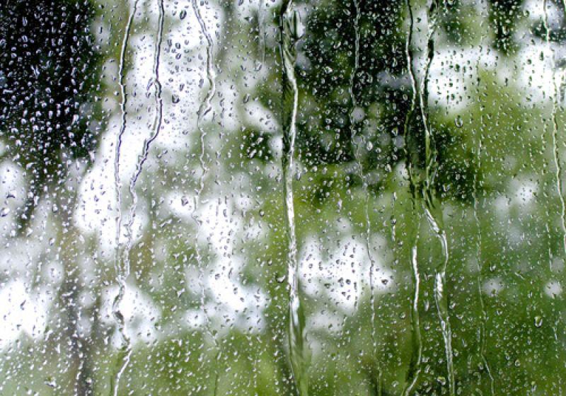Rain dripping down the bus window.