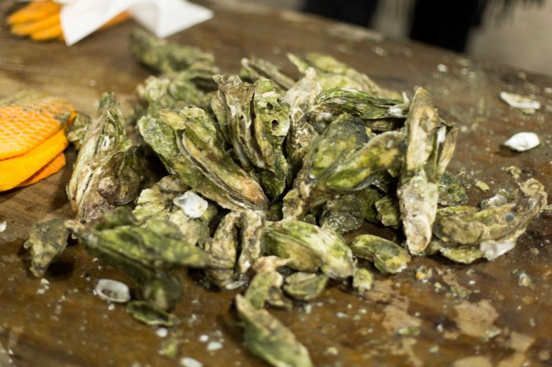 Oyster shells: evidence of a feast enjoyed by all