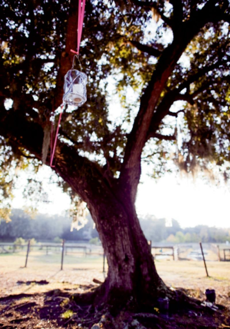 REE TOPS: Whitney of Branch Design Studio hung lanterns from live oak trees with ribbons for color before the sun set and warm lighting afterward.