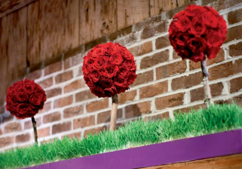 """ROSES ARE RED: To top the immense fireplace mantel, John and his mom built flower boxes, which were """"planted"""" with wheatgrass that sprouted crimson topiaries."""