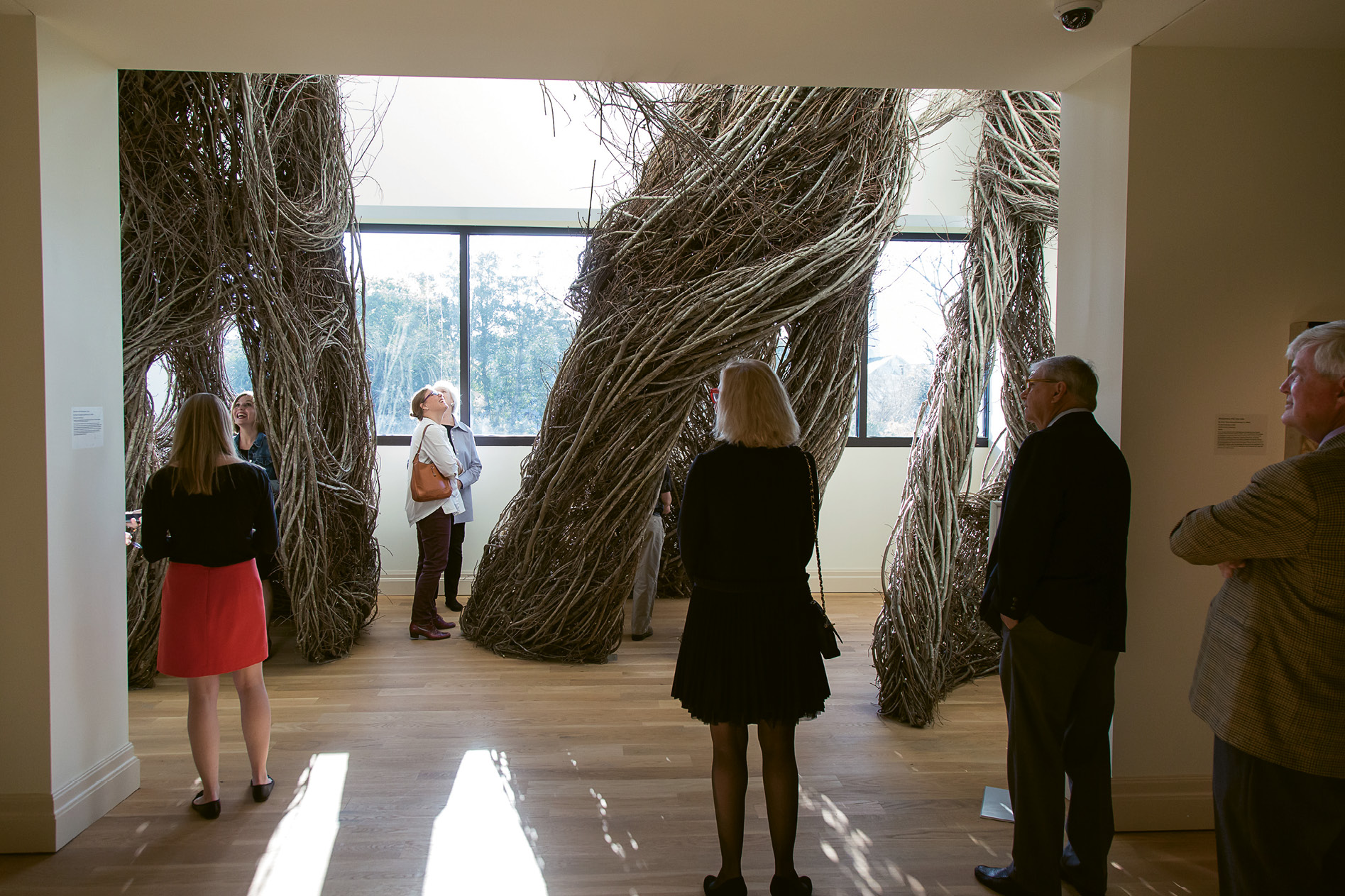 Patrick Dougherty's Betwixt and Between installation at the Gibbes