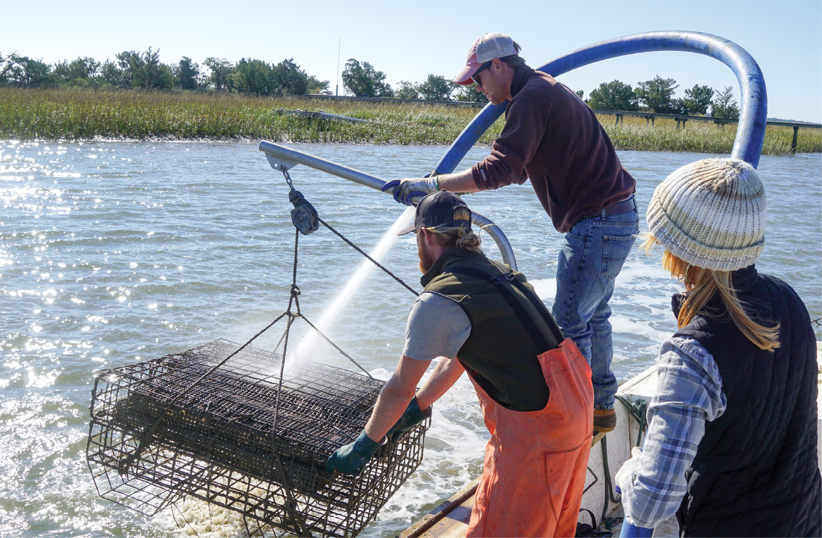 Charleston Oyster Farm's Peter and Thomas Bierce and Caitlyn Mayer blast the cages of their oyster singles with water straight from the Stono River.<br />