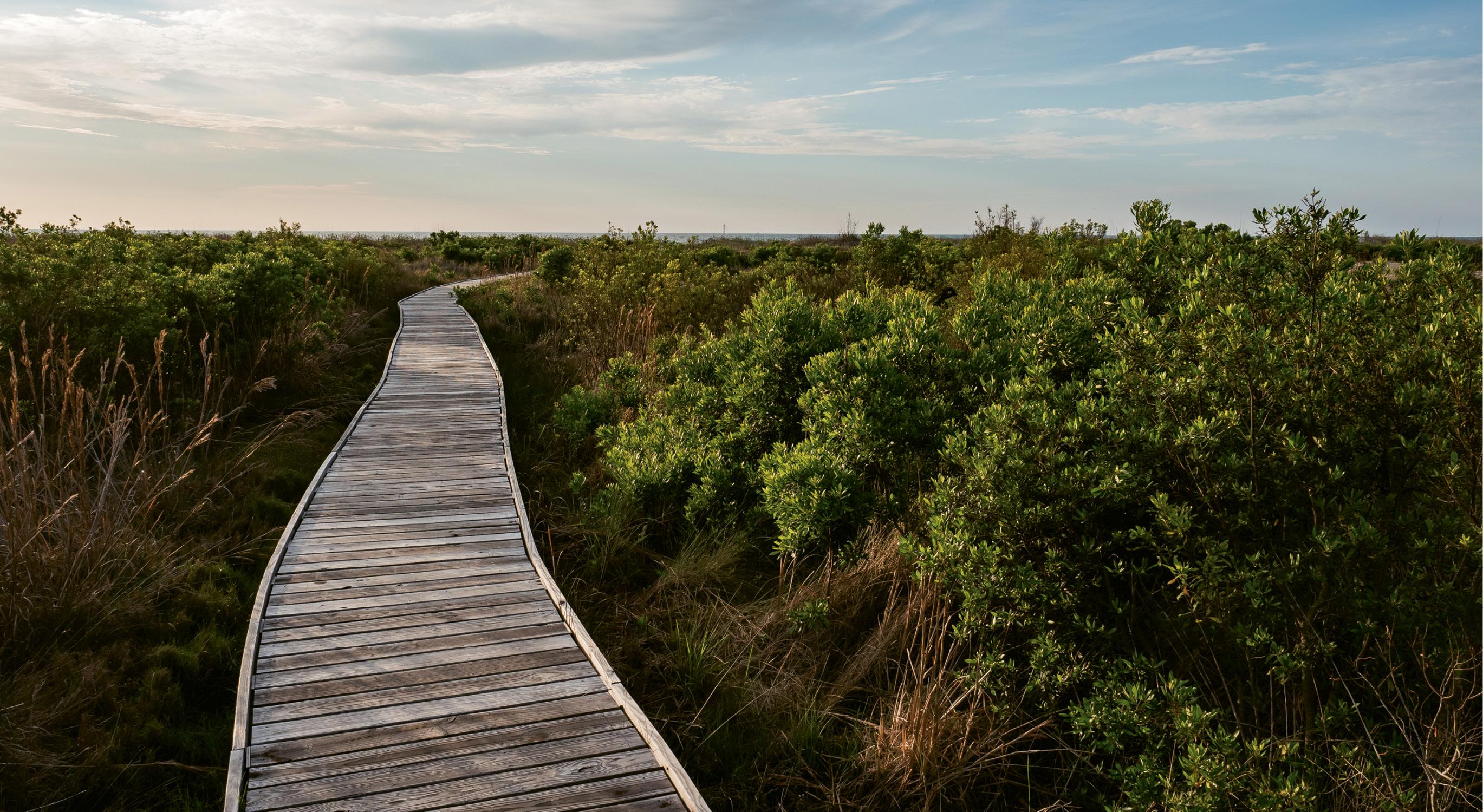 The beach boardwalk.