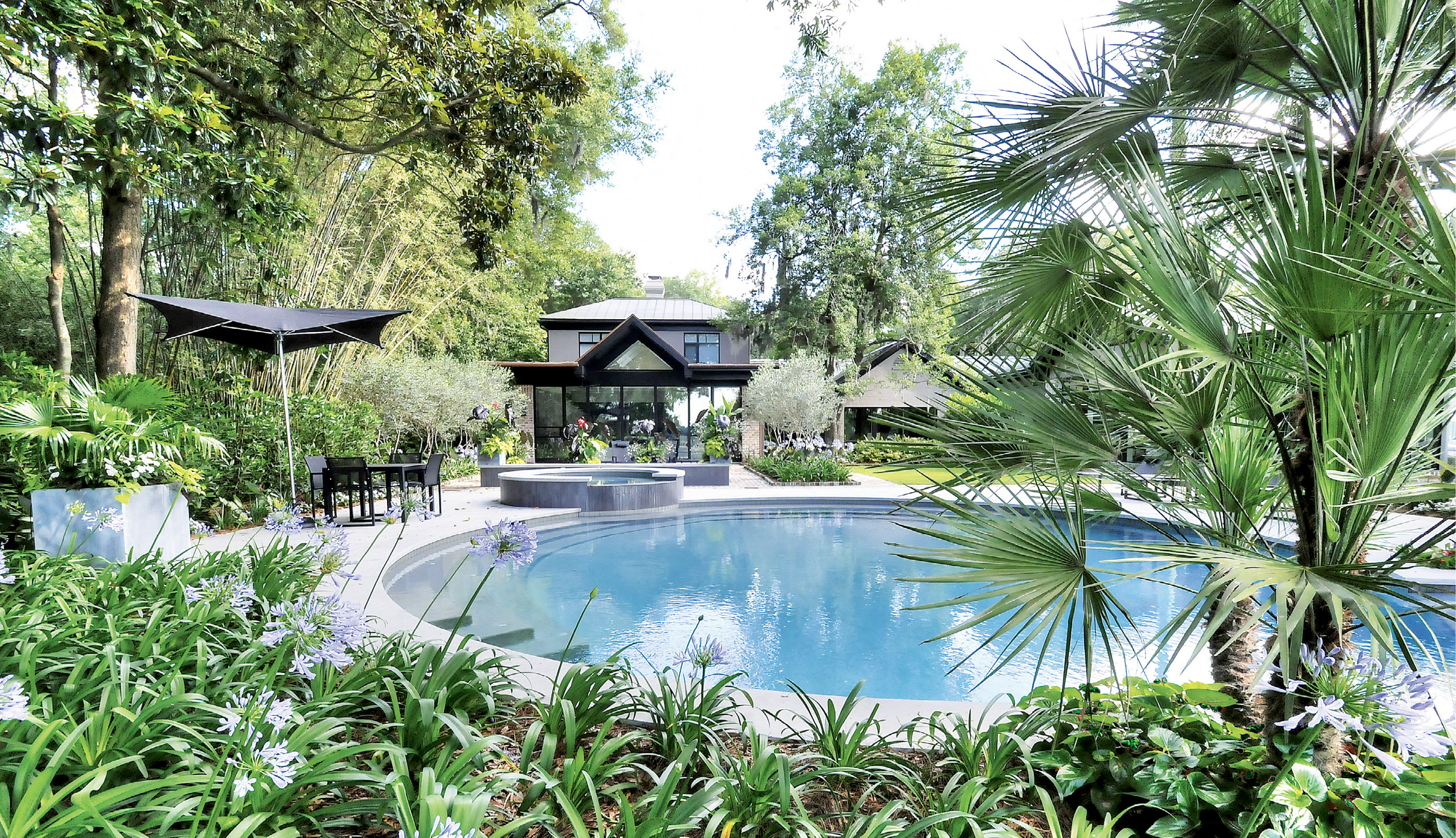 Round About: The pool's graceful shape is echoed by a stone patio, which Wertimer further defined with dwarf palms and climbing fig.