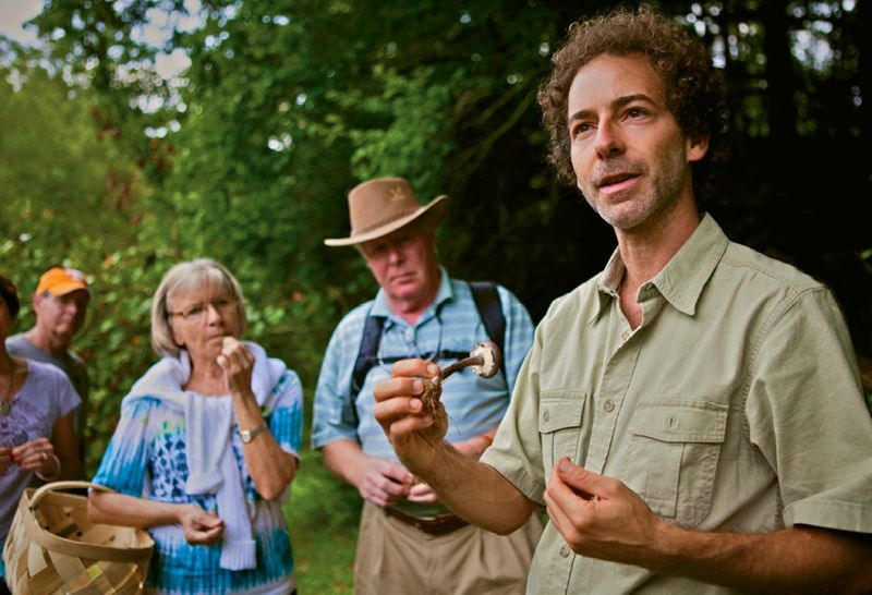 Alan Muskat leads his No Taste Like Home foraging tours in the Blue Ridge Mountains.