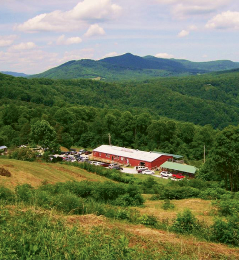 The Orchard at Altapass in Spruce Pine